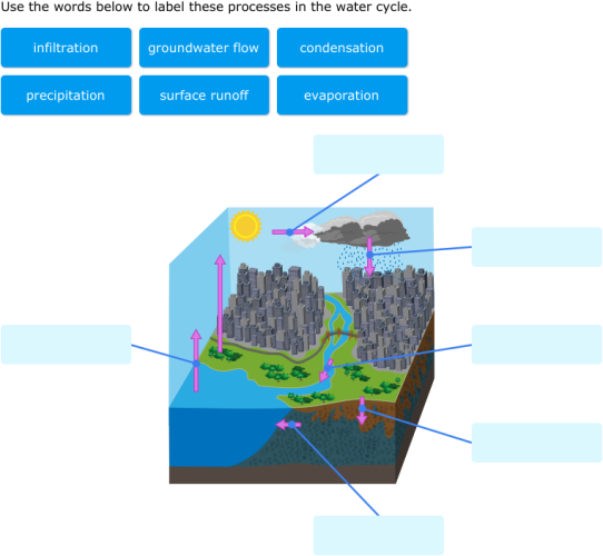 ixl label parts  water cycle diagrams  grade science