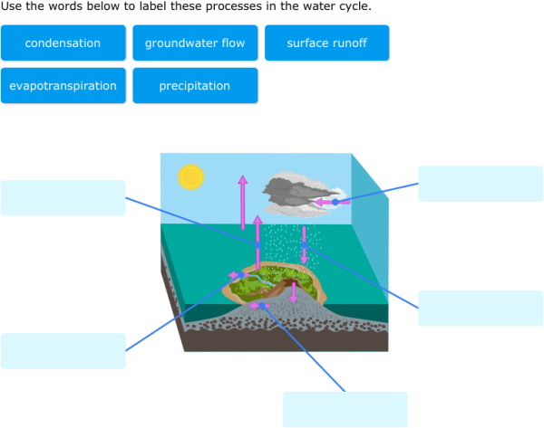 Ixl label parts of water cycle diagrams 6th grade science practice ccuart Choice Image